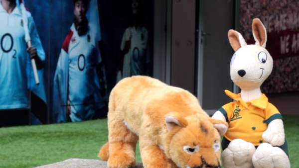Twickenham recibirá a Pumas y Wallabies